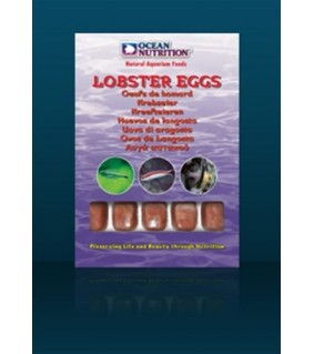 Ocean Nutrition Lobstereggs (20 cubes)