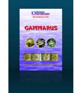 Ocean Nutrition Gammarus (20 cubes)