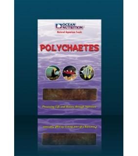 Ocean Nutrition Polychaetes (mono tray)