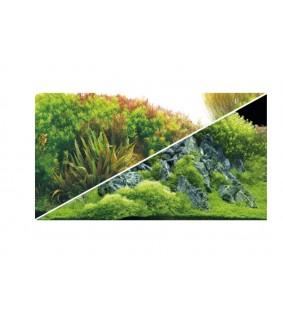 Hobby Fotorückwandzuschnitt 'Planted River/Green Rocks' 100x50 cm