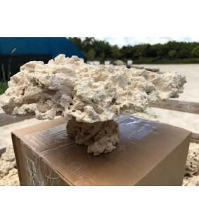 Marcorock - Pedestal rock (natural top)