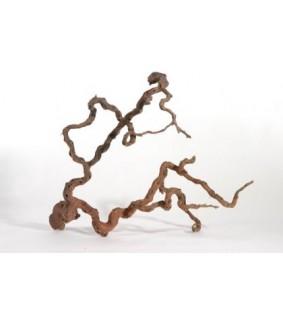 Winewood L 80-100 cm