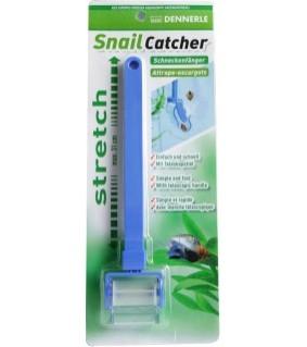Dennerle snail-catcher