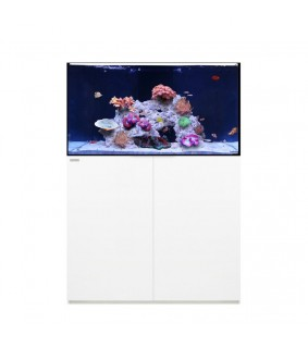 Waterbox Reef 100.3 (368l)