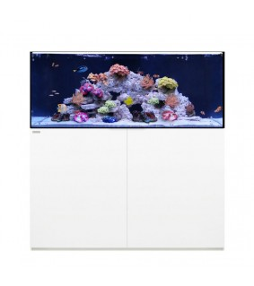 Waterbox Reef 130.4 (480l)