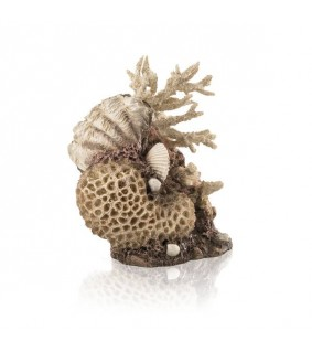 Oase biOrb coral-shells ornament natural