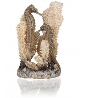 Oase biOrb seahorses on coral natural S