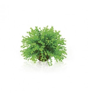 Oase biOrb Flower ball green