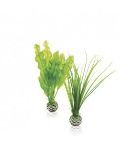 Oase biOrb Easy plant set S green