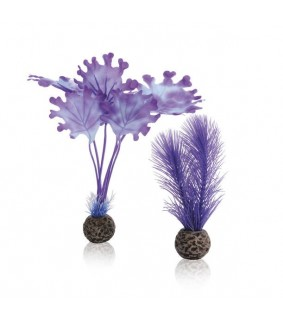 Oase biOrb Kelp set S purple