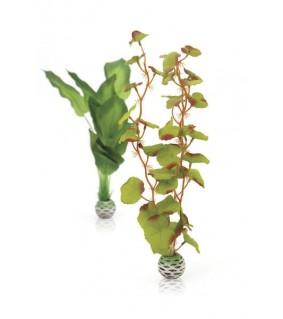 Oase biOrb Silk plant set M green
