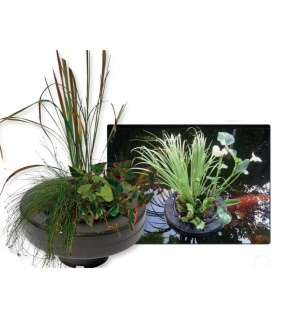Superfish FLOATING PLANT BASKET halk 30CM