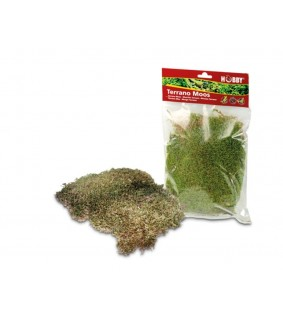 Hobby Terrano Natural Moss