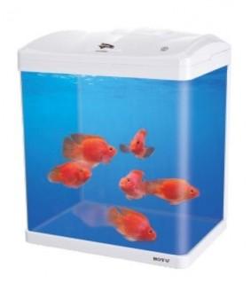 Boyu LED akvaario 33 l, valkoinen
