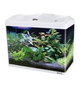 Boyu LED akvaario 66 l, valkoinen