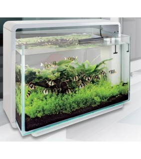 SUPERFISH HOME 25 AQUARIUM WHITE