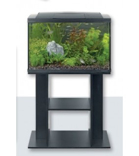 SUPERFISH STAND START 50 BLACK