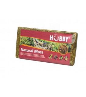Natural Moss