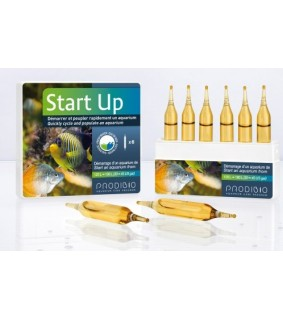 Prodibio Start Up 6 vials