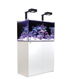 Red Sea Reefer 250 Deluxe musta