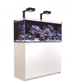 Red Sea Reefer 350 Deluxe musta