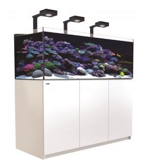Red Sea Reefer XL 525 Deluxe valkoinen