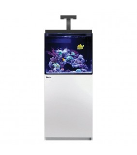 Red Sea Akvaariosetti Max E-170 valkoinen