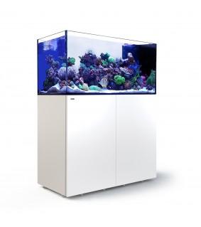 Red Sea Peninsula P500 valkoinen