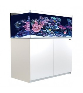 Red Sea Akvaariosetti Reefer XL 425 valkoinen