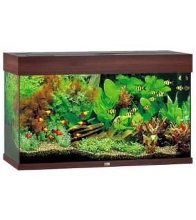 JUWEL LED RIO 125 akvaario ruskea