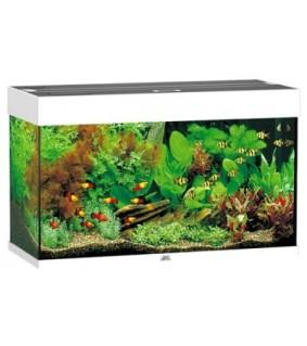 JUWEL LED RIO 125 akvaario valkoinen