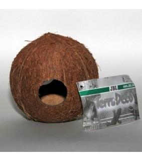 Kookosluola