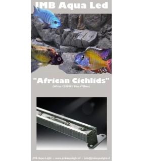 JMB Aqua LED AFRICAN CICHLIDS 9W / 30 cm