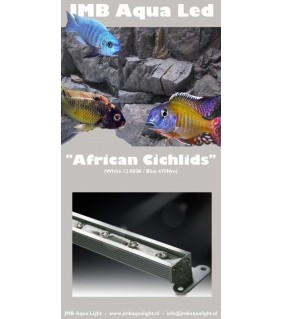 JMB Aqua LED AFRICAN CICHLIDS 36W / 120 cm