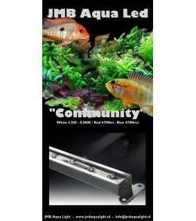 JMB Aqua LED COMMUNITY valkoinen/punainen 18W / 60 cm kirkas