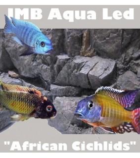 JMB Aqua Light SMD African Cichlids 7,2W / 50 cm