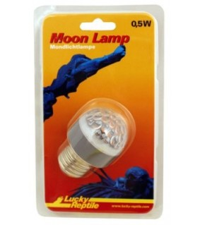 Lucky Reptile MOON LAMP E27
