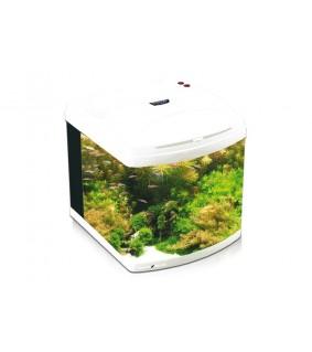 Aquatic Nature Aquarium EVOLUTION 1 Pearl white
