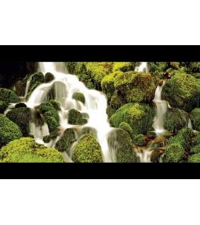 Aquatic Nature AQ MOSS 80 X 40 CM