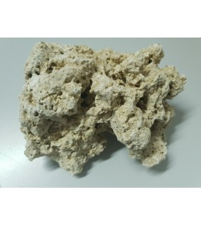 Dry Base Rock Indonesia 18-20kg