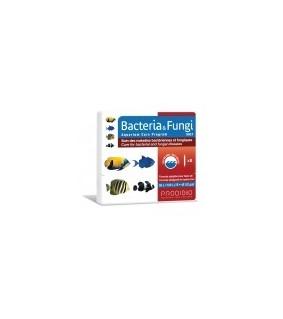 Prodibio Bacteria & Fungi Salt 6 ampullia