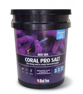 RedSea Pro Coral suola 22kg