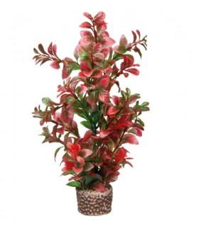 Hobby Flora Stone 7, 4 x 25 cm