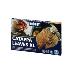 Hobby Catappa Leaves XL 12 pcs., s.s.