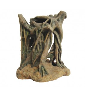 Hobby Azalea Root 3 33 x 26x 35,5 cm