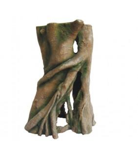 Hobby Azalea Root 1, 19 x 25 x 12 cm