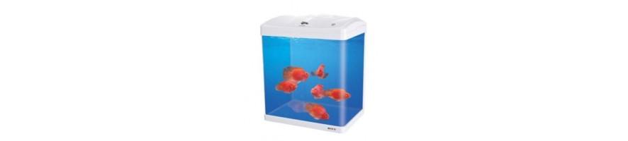 Boyu akvaario