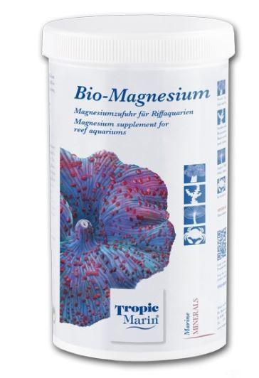 Mg - magnesium