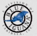 Blue Iquana